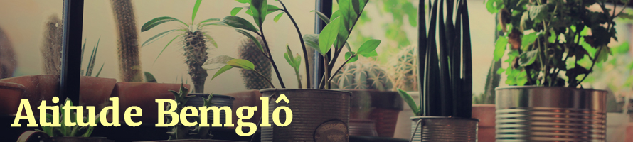 Plantas que umidificam, filtram e oxigenam