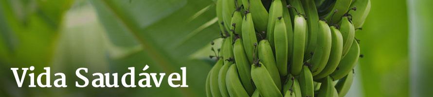 Os benefícios da Biomassa de banana verde
