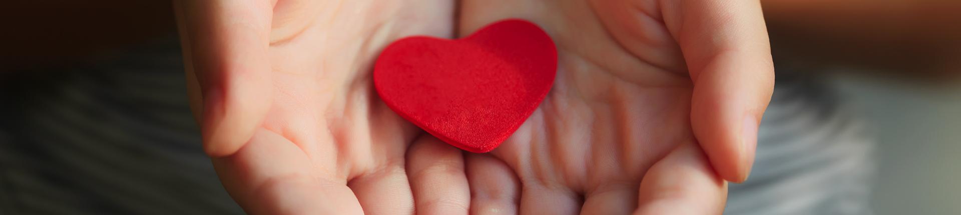 Doação de órgãos: conheça uma história cheia de atitude Bemglô