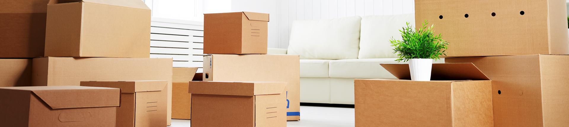 Decoração e sustentabilidade: móveis de papelão