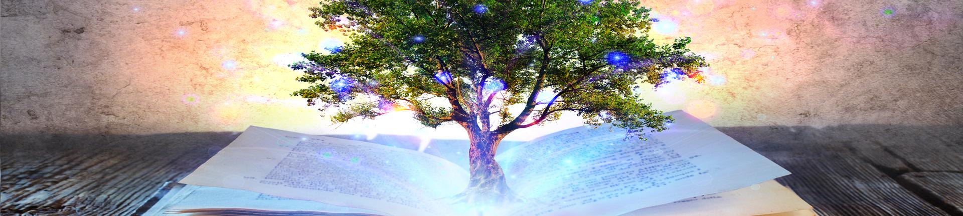 Livros e sustentabilidade: praticando a leitura sustentável