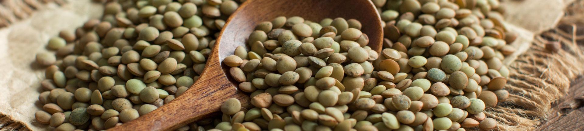Culinária Ayurveda: Kichadi, arroz com lentilha e especiarias