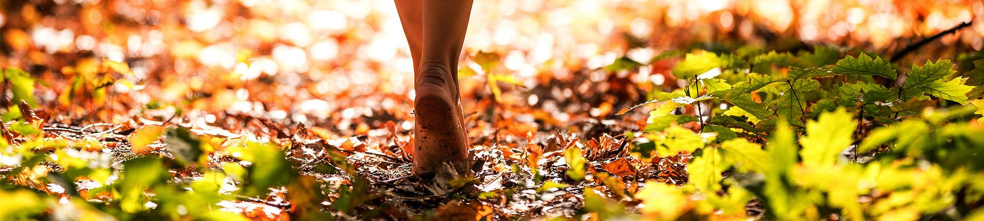 Earthing: uma nova maneira de cuidar do seu corpo