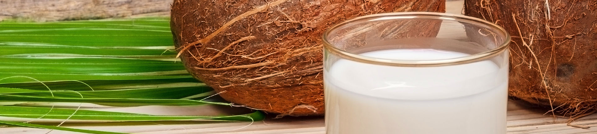 Leite de coco caseiro e vegano