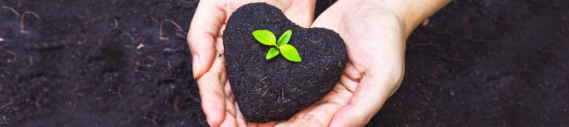 Como reutilizar coisas em casa e proteger o meio ambiente