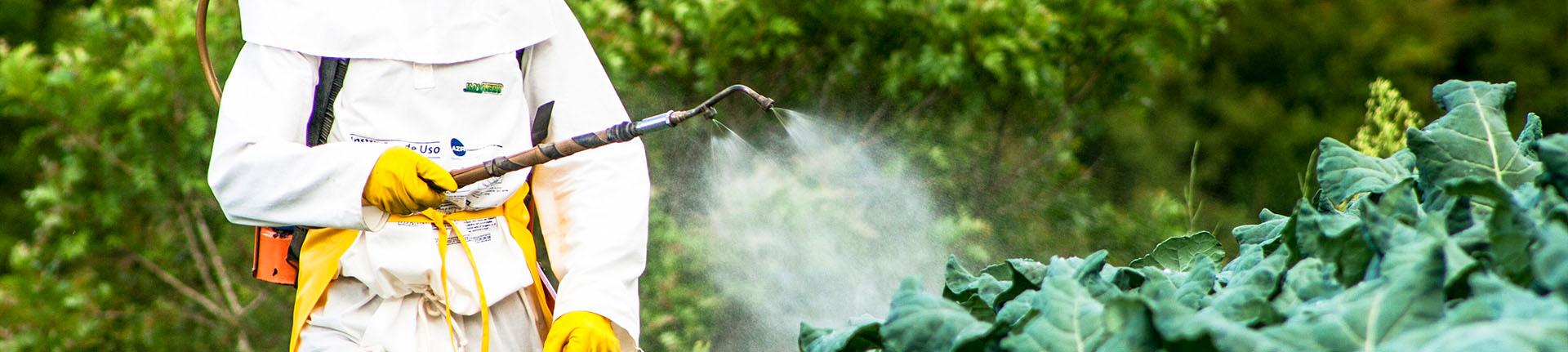 Agrotóxicos, o perigo de consumi-los e como eliminá-los