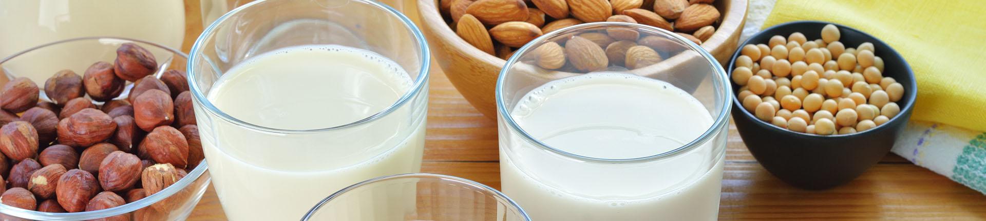 Tipos de leite alternativos ao leite de vaca