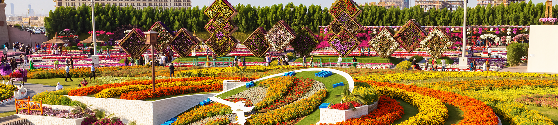 Dubai Miracle Garden, o maior jardim do mundo