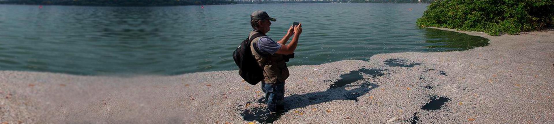 O trabalho de recuperação do sistema lagunar: Biólogo Mario Moscatelli