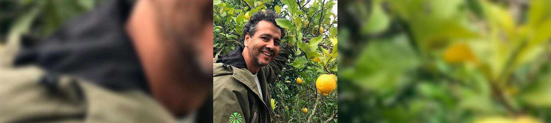 Vale das Palmeiras, orgânicos do ator Marcos Palmeira
