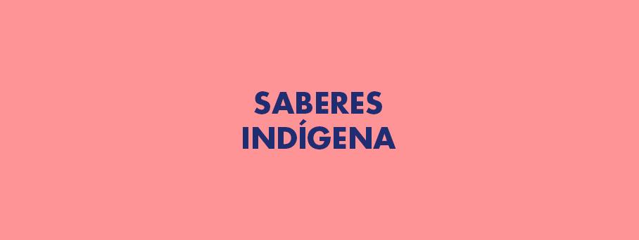 Valor cultural dos saberes indígenas