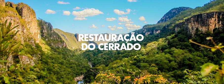 Coletores de Sementes – Restauração do Cerrado