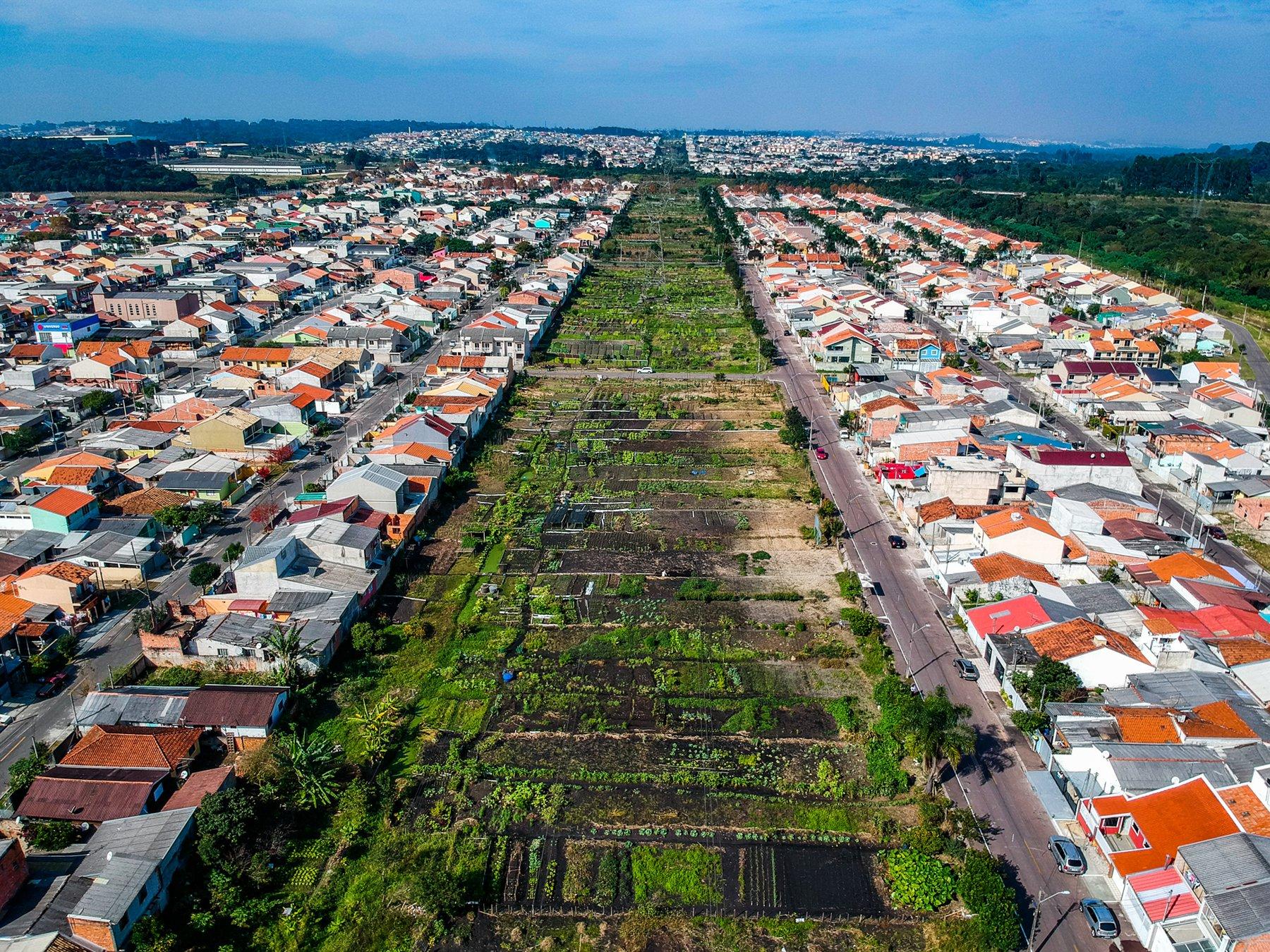 Horta Urbana de Curitiba