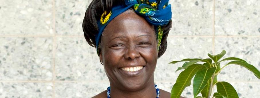 O legado verde de Wangari Maathai