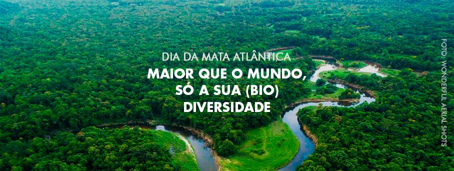 Mata Atlântica: Maior que o mundo, só a sua (bio)diversidade